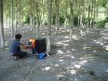 Alberto con el proyecto en el bosque Arteleku - thumbnail