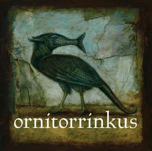 Ornitorrinkus
